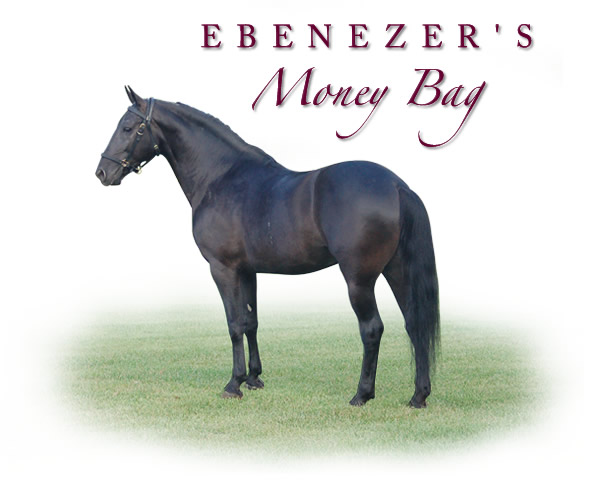 Ebenezers Money Bag